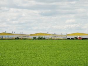 Сельскохозяйственные комплексы и строения